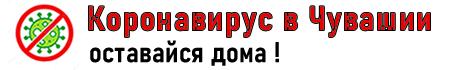 За сутки от коронавируса скончались еще четыре жителя Чувашии - Новости